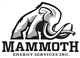 Mammoth Energy Services, Inc. logo